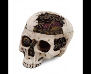 Cyberpirate Skull Box